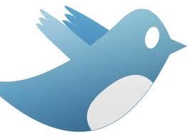Twitter begint tonen van advertenties in tijdlijn voor mobieltjes, Mediafacts, MediaFacts