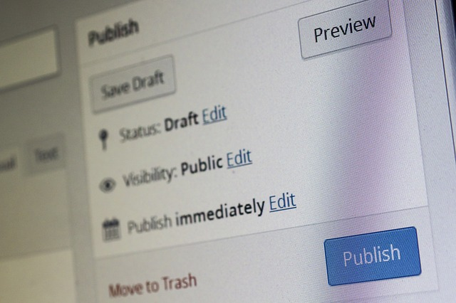 Het gebruiken van tools op een redactie is geen journalistieke innovatie, Hans van der klis, MediaFacts