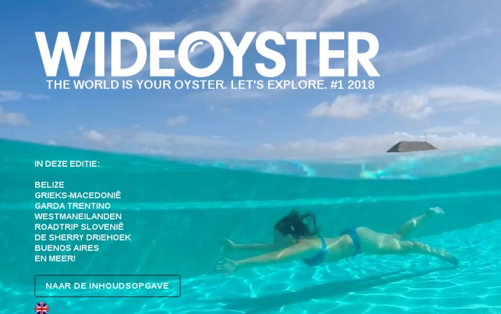 Online kwartaalmagazine Wideoyster van start met 120.000 abonnees, Hans van der klis, MediaFacts