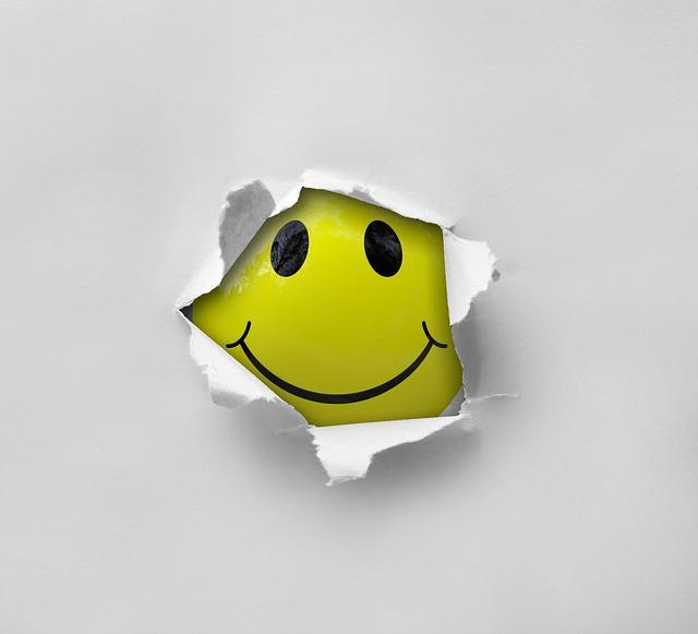 Taalunie wil smileys in kranten, Hans van der klis, MediaFacts