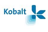 Martin Wink naar Kobalt, Verhart weg bij Media Republic, Mediafacts, MediaFacts