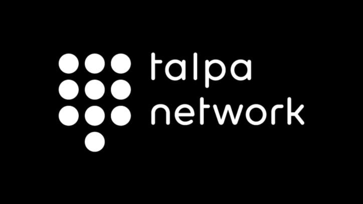 De Mol bundelt mediabedrijven in Talpa Network